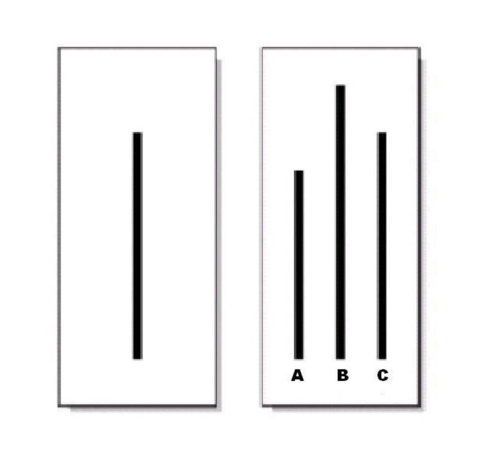 A, B czy C - która kreska jet podobna do tej pierwszej? Doświadczenie Ascha