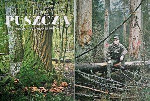 Fragment ulotki wydanej przez DGLP. Ostatnie 30 lat doprowadziły Puszczę do stanu jak na 2 obrazie, lecz niewiele z tym wspólnego maja leśnicy.