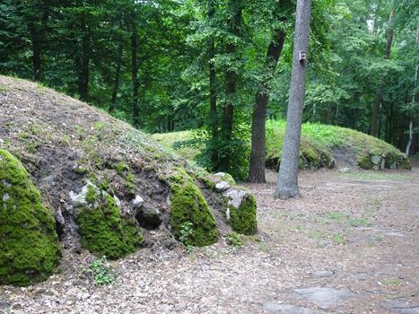 Grobowce megalityczne z Wietrzychawic