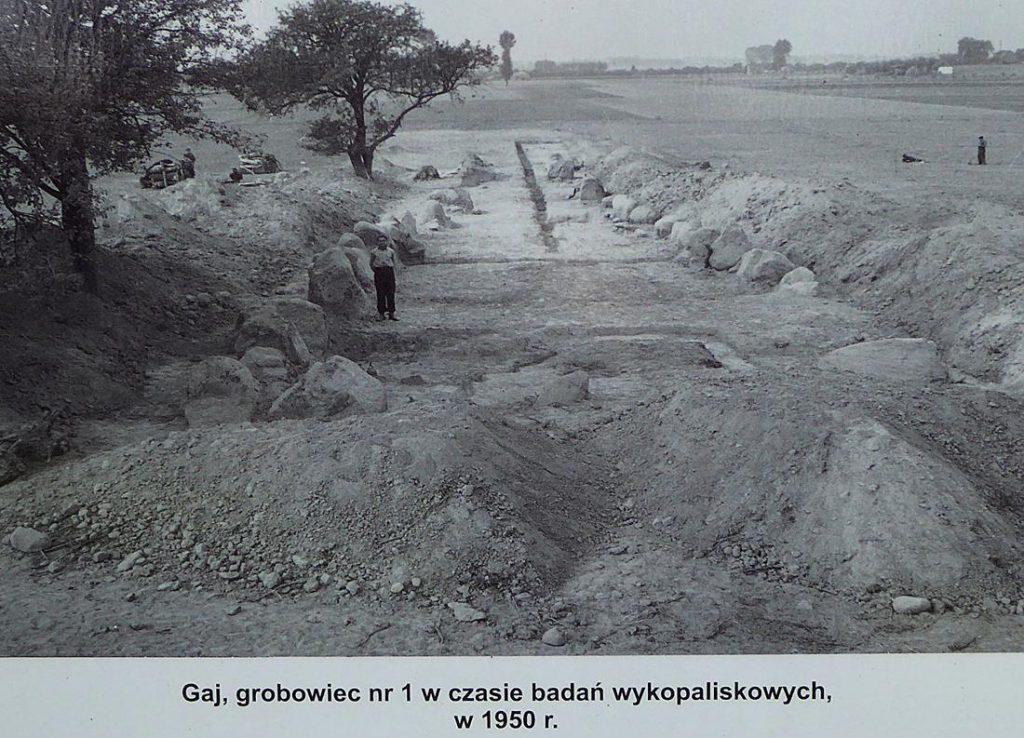 Prace archeologiczne w Gaju