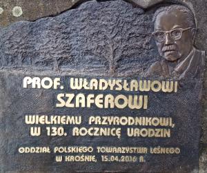 Tablica pamiatkowa poświęcona prof. Władysławowi Szaferowi