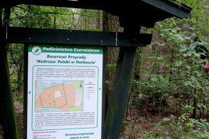 Rezerwat przyrody prawem chroniony