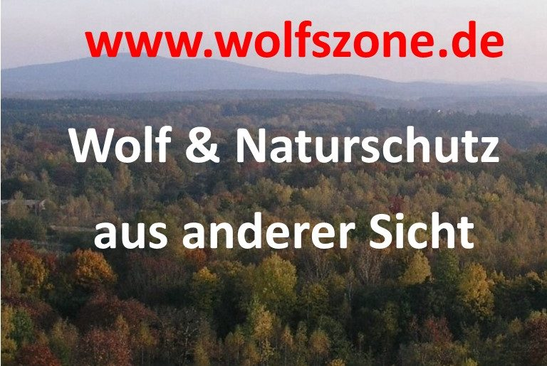 Strona edukacyjna poiświęcona ochronie wilka